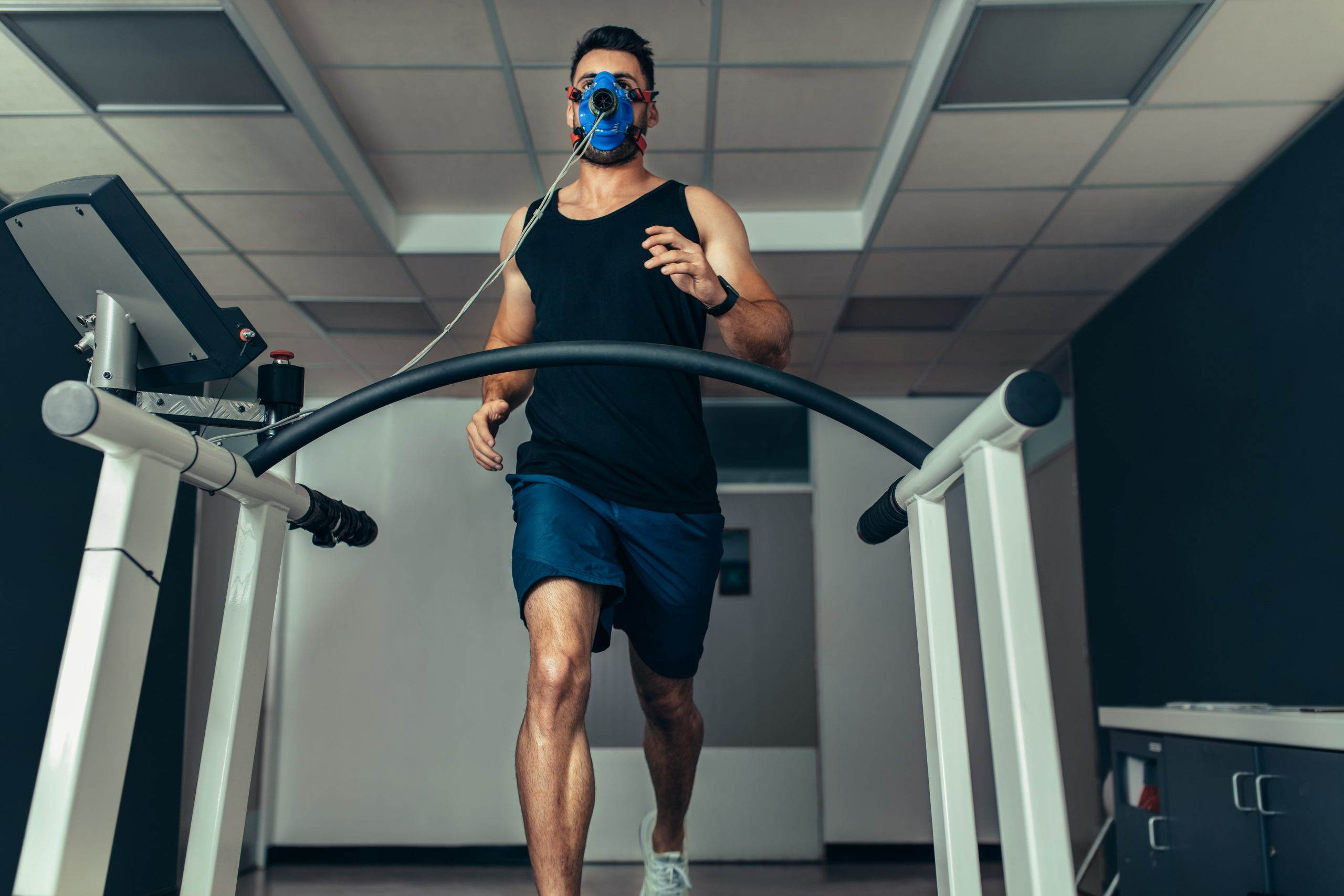 Exercise science link